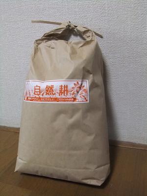 Dscf4299